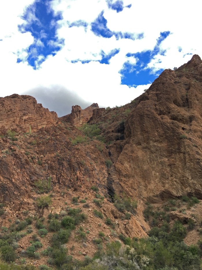 Cliff where we spotted the ewes at Kofa
