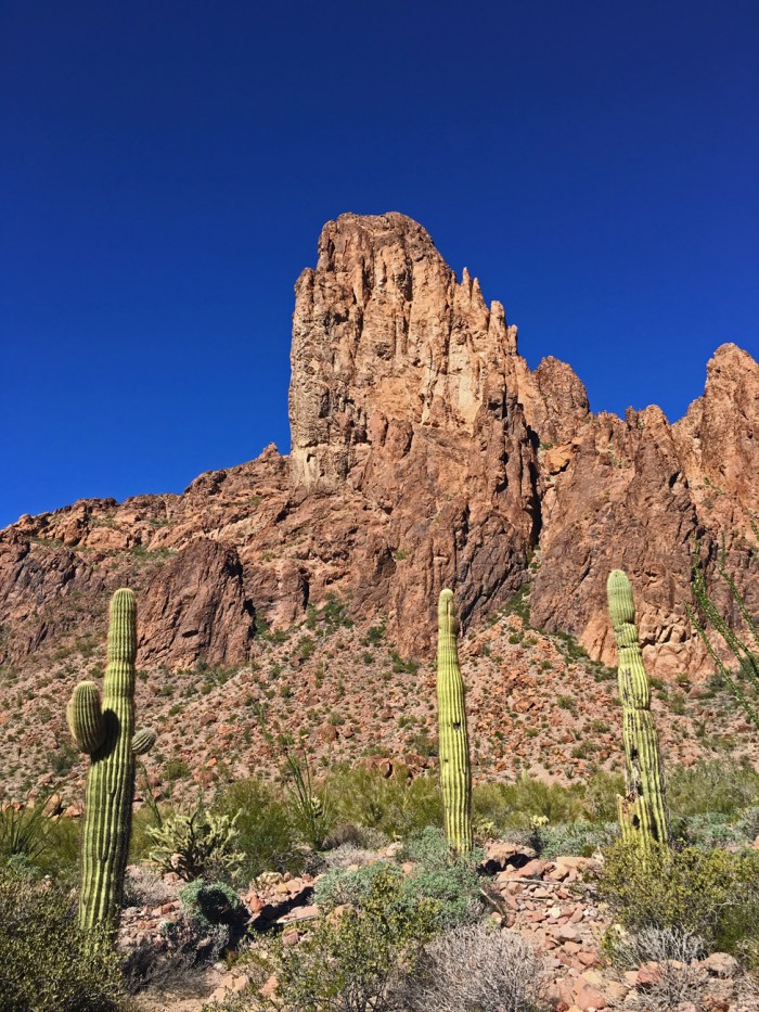 Rock formation and saguaro cacti in Kofa Queen Canyon