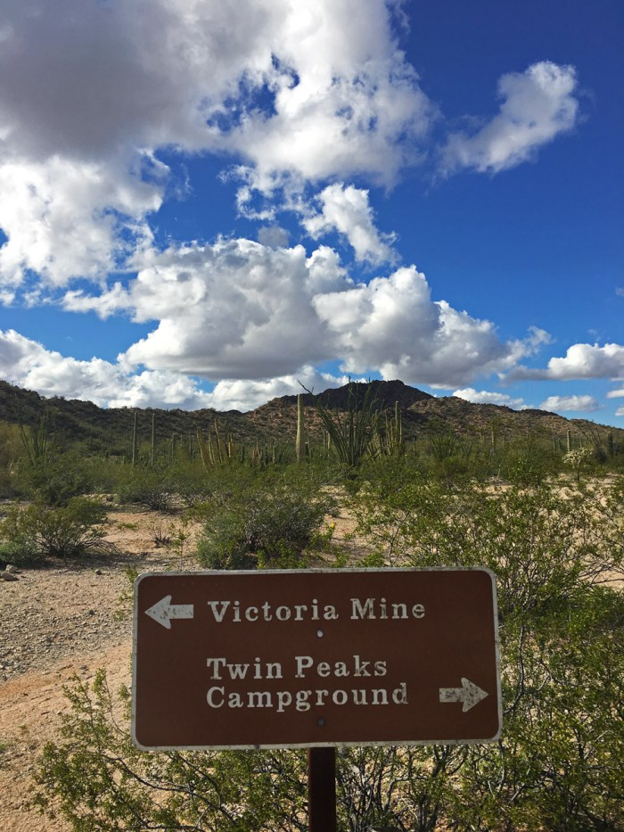 Trail sign showing Victoria Mine one way and Twin Peaks Campground in the other with the desert behind it