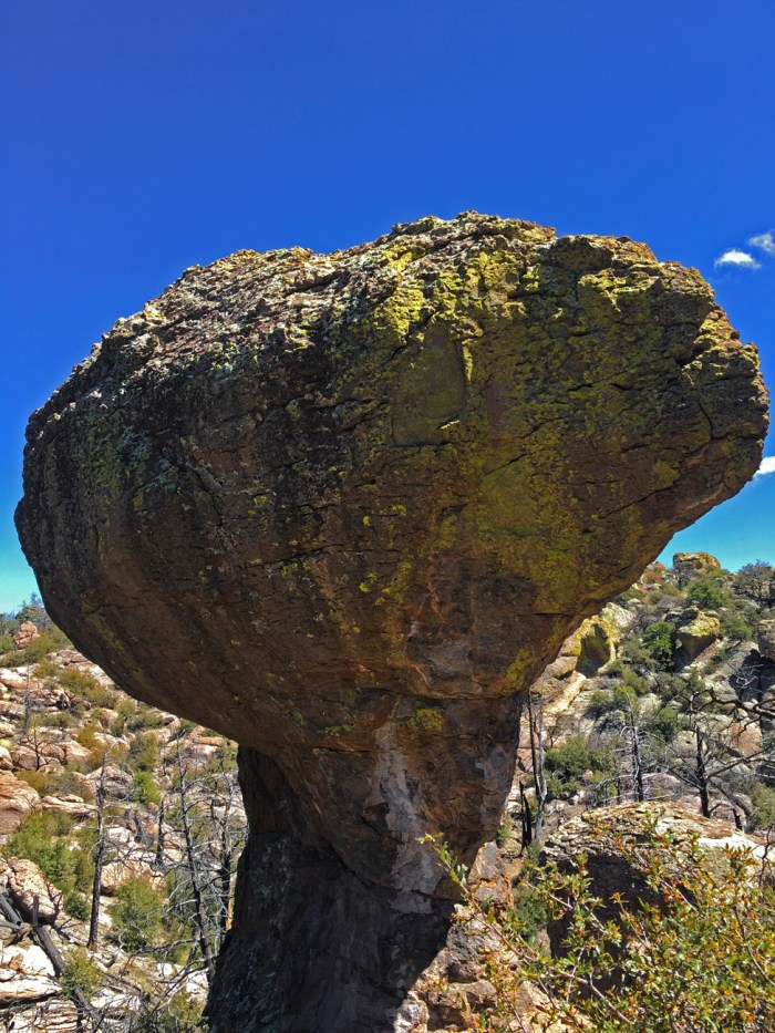 Rock in the shape of a tree or mushroom on the Echo Canyon Trail