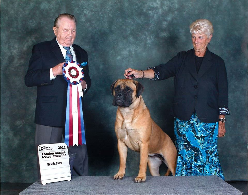 Bramstoke's Paige Turner Best In Show #2