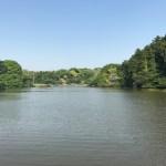東京都心から918円で行ける!田舎と自然と史跡と温泉があって超穴場のレジャースポットとは?