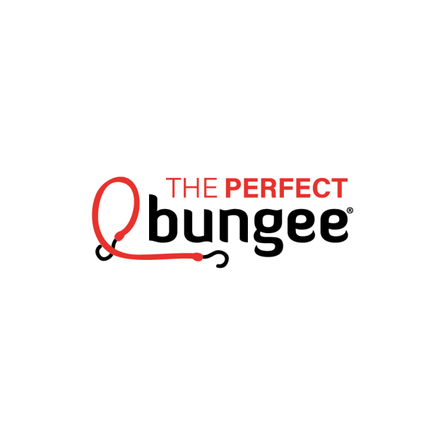 The Perfect Bungee/ザ パーフェクト バンジー