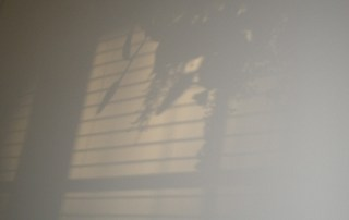 Shadow and light make art
