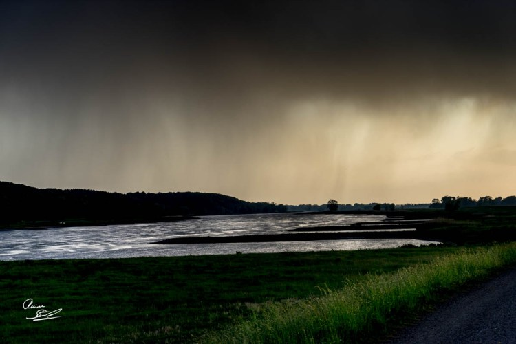 Biosphärenreservaten Flusslandschaft Elbe