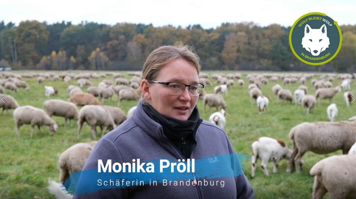 Monika Pröll