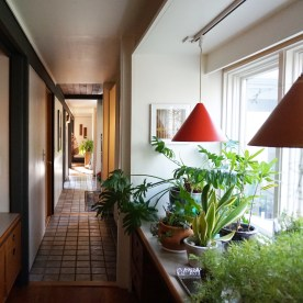 "Hallway and ""greenhouse"" area"