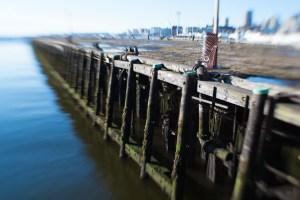 Mossy Pier