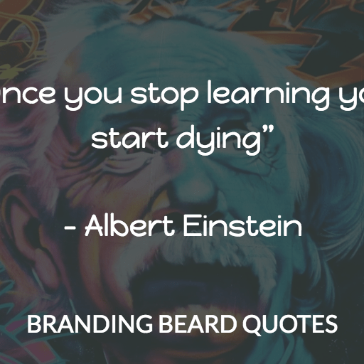 Einstein Quotes - Learning