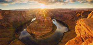 arizona sunshine share