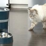 PetSafe Introduces Alexa Integrated Automatic Pet Feeder
