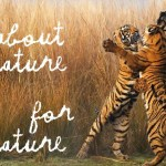 Kenzo announces partnership with World Wide Fund for Nature (WWF)