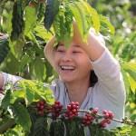 Nescafé to use the power of coffee to improve more lives