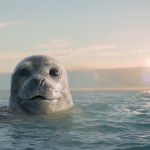 Carlsberg UK partners WWF in commiting to a sustainable future