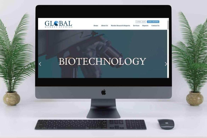 gms-website-design