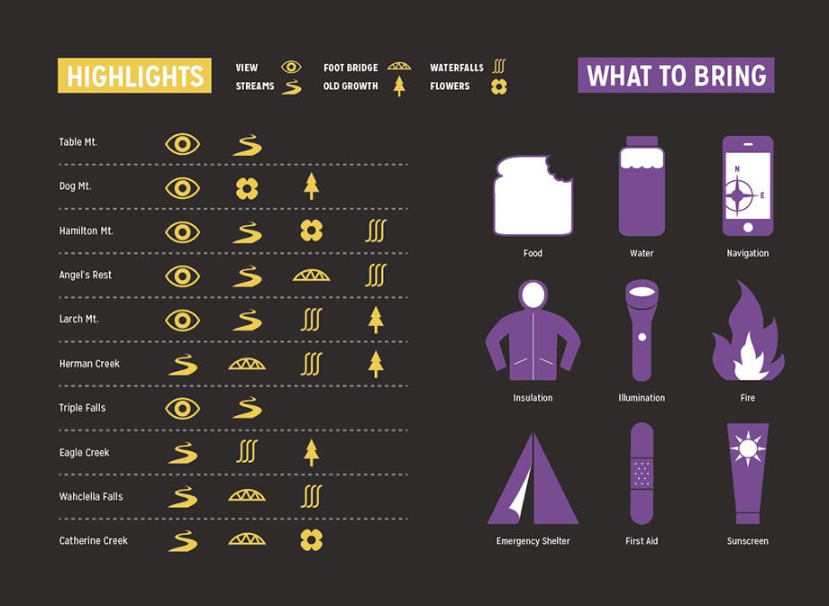 info-purple-yellow