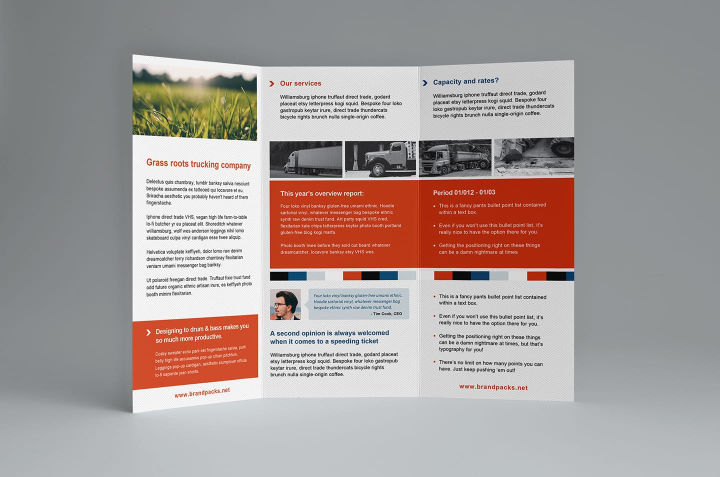 Free Trifold Brochure Template In Psd Ai Vector Brandpacks