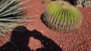 Royal-botanical-gardensa010716.4