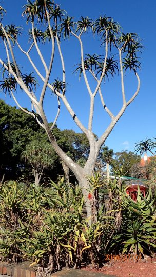 Royal-botanical-gardensa010716.6