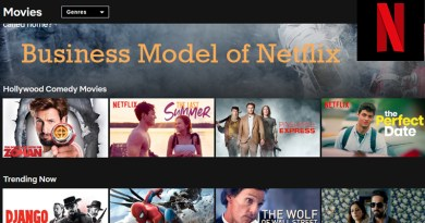 Netflix Business Model For Exponential Growth