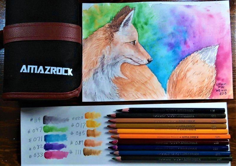 Amazrock Watercolor Pencils | Watercolor Painting tutorial lesson