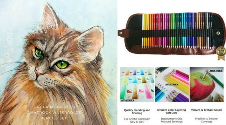 Maine Cat Watercolor Painting with Amazrock Water Soluble Colored Pencils