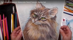 Amazrock Watercolor Tutorial | Completed Maine Cat Painting with Amazrock Watercolor Pencils