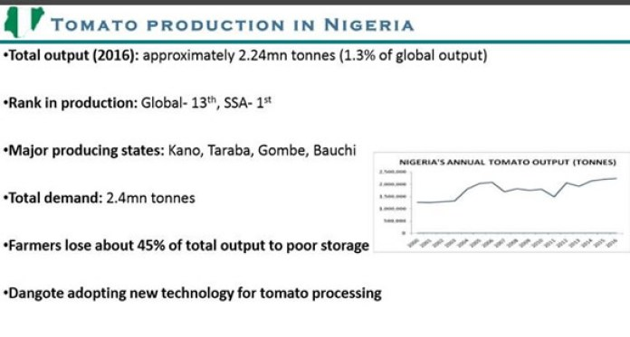 Nigeria is the Largest Producer of Tomatoes in Sub-Saharan Africa & 13th in the World - Brand Spur