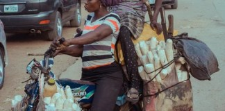 New insights to help advance cassava breeding worldwide