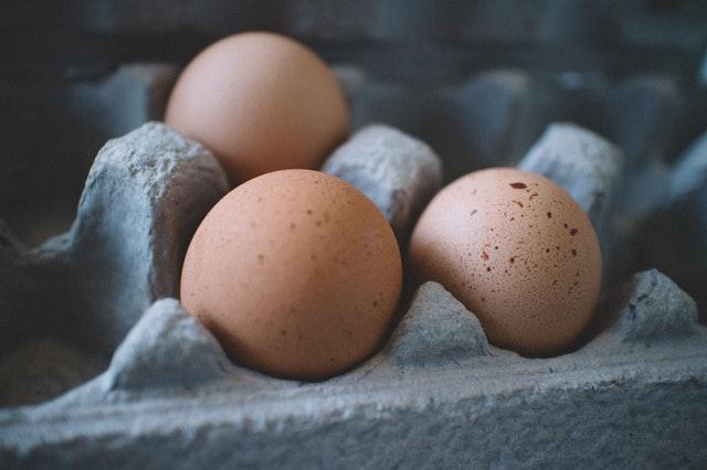 Top 10 Take-Aways From Protein Challenge Webinar Series 8 Brandspurng