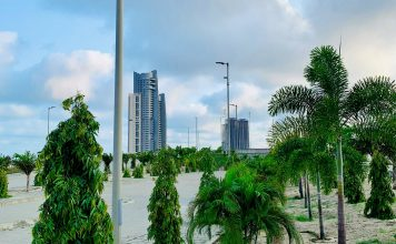 Trees-in-Eko-Atlantic-City Brandspurng Eko Atlantic's Green City Commitment On a mission to plant over 200,000 trees