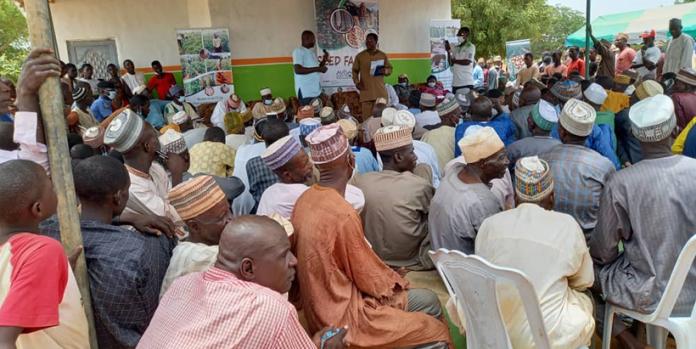 IITA And Partners Organize Seed Fair In Kano And Jigawa-Brand Spur Nigeria