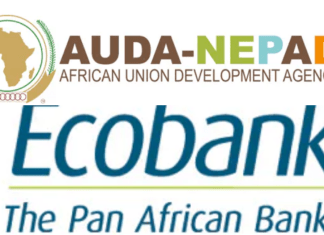 Over 200 Graduates Emerge From The Ecobank Group And AUDA-NEPAD MSME Training-Brand Spur Nigeria