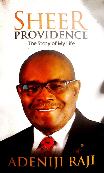 Fractions of History: Review Of Sheer Providence By Adeniji Raji-Brand Spur Nigeria