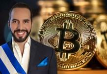 El Salvador To Build Veterinary Hospital With Bitcoin Profits
