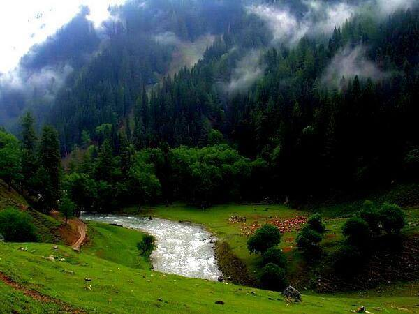 15- Neelum Valley, Azad Kashmir.jpg