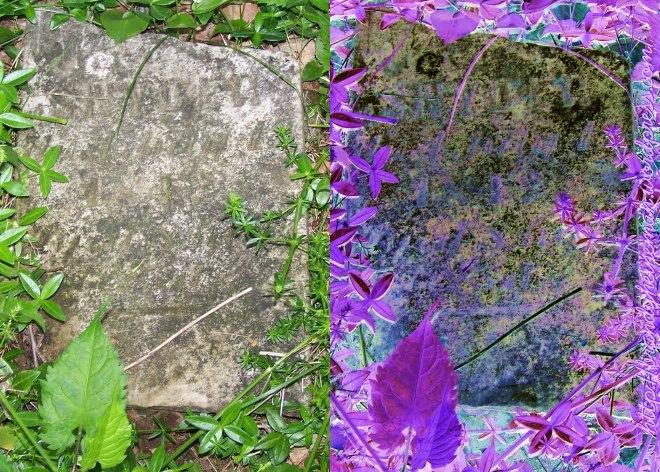 Rude-Snyder Cemetery   Cuba, Allegany, New York