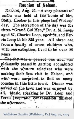 1903-08-27; Wellsboro Gazette (Wellsboro, PA) - Wed (Reunion at Nelson)