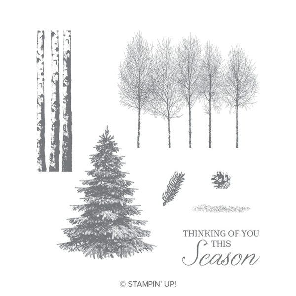 Stampin Up Winter Woods Bundle Video By Stampin Up