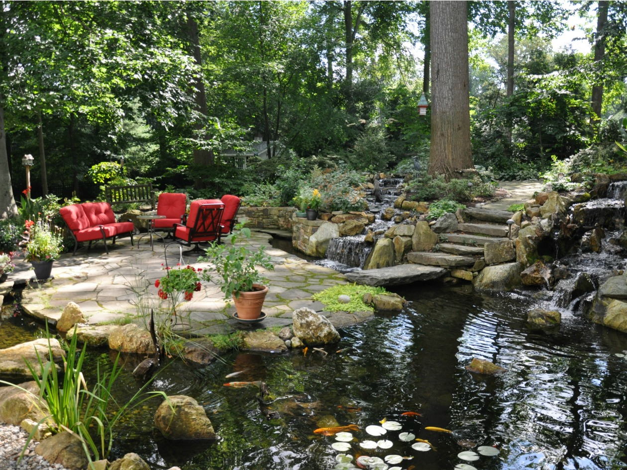 Backyard Water Ponds