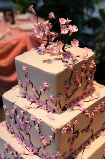 Branham Perceptions Photography - Cherry Blossom (19)