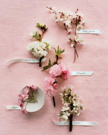 Branham Perceptions Photography - Cherry Blossom (3)