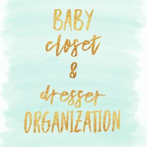 IMG 5321 - Nursery Organization