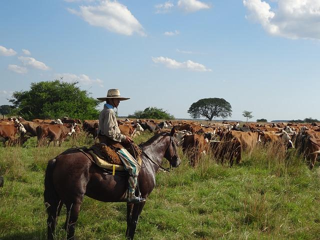 Charles Darwin, los gauchos y el ritual del asado argentino
