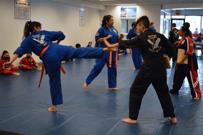 Martial Arts Braselton GA