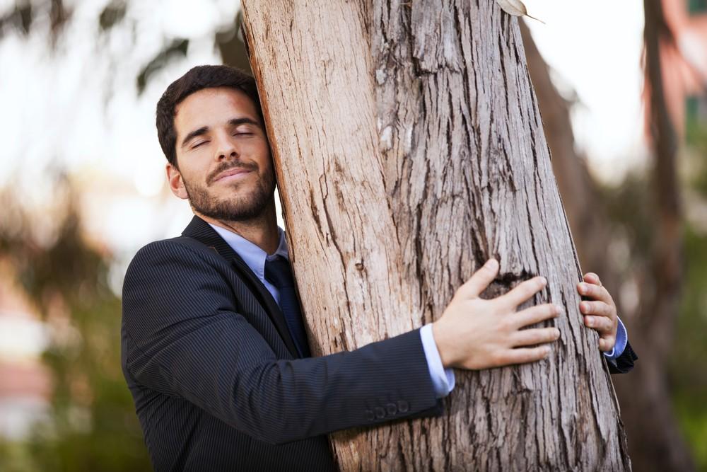 trunk man tree Naturaleza en ingles Learn Vocabulary in English