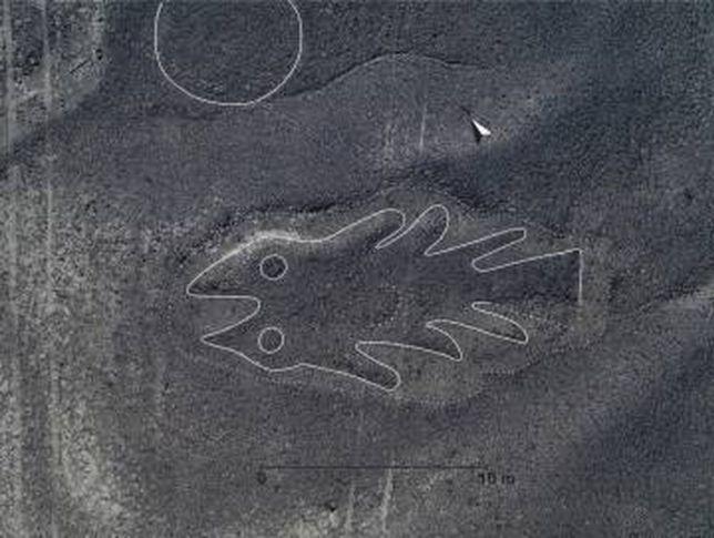 Imagem em alta resolução de um geoglifo em forma de peixe.