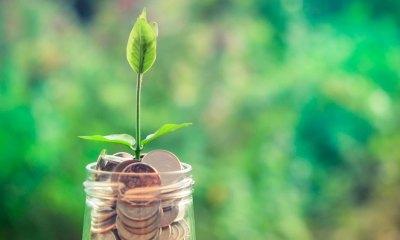 7 dicas para fazer seu dinheiro render em 2019