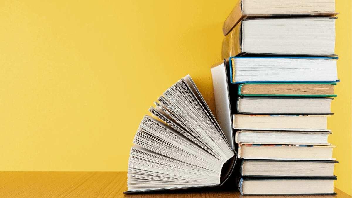 Buscando por inspiração? Veja os livros super interessantes para expandir os seus horizontes