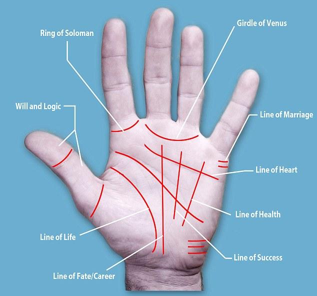 Palm Lines Surgery Procedure
